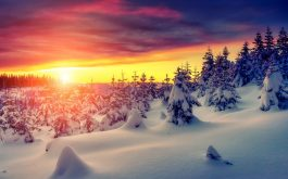 gorgeous-winter-sunrise-2880x1800