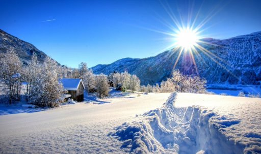 nature_forest_dawn_winter_mountains-1920x1080