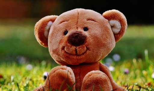 teddy_bear_toy_grass-1920x1080