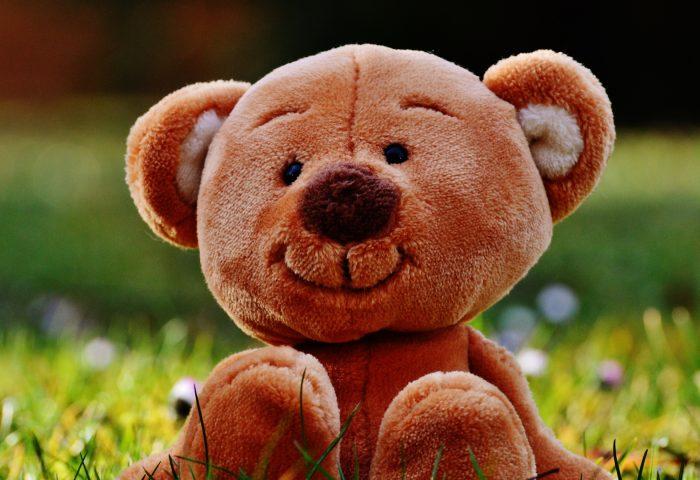 teddy_bear_toy_grass-1920x1080