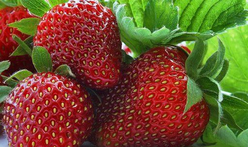 strawberry_berry_sweet_ripe-1920x1080