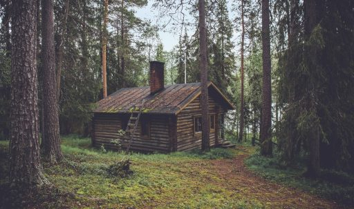 wood_house_summer-1920x1080
