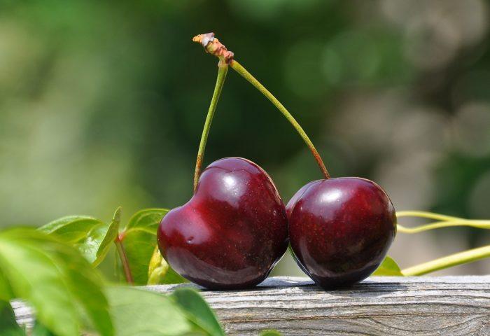 cherry_berry_close_up-1920x1080