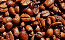 coffee_grain_texture-1920x1080