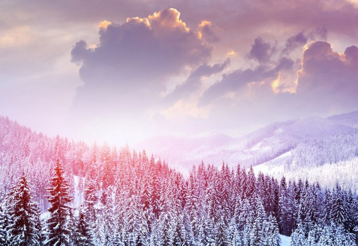 landscape_winter_snow_trees_mountains_forest_sky_clouds-1920x1080