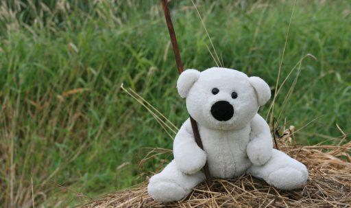 white_toy_teddy_bear_mood_walk_hay_grass-1920x1080