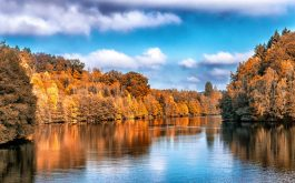 autumn_lake_trees_reflection-1920x1080