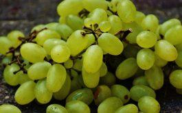 grapes_berries_fruit_ripe-1920x1080