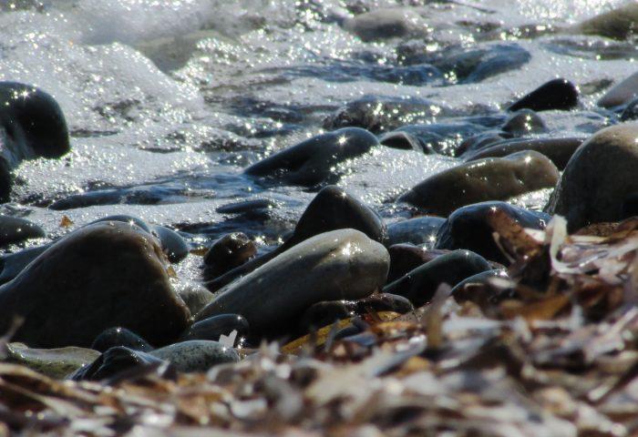 rocks_sea_shore_surf-1920x1080